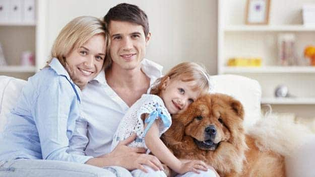Wills & Trusts dog-young-family Direct Wills Cheshire